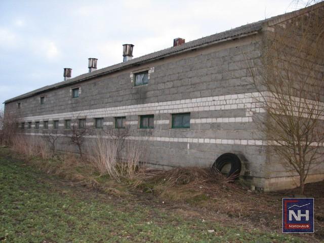 Obiekt Przemysłowy Kłecko - oferta 55959