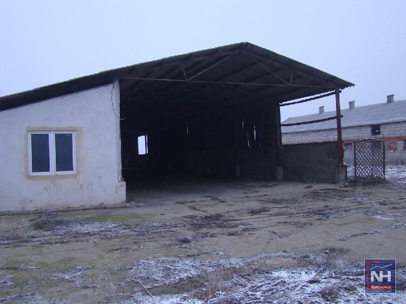 Obiekt Przemysłowy Głogówko Królewskie - oferta 62849