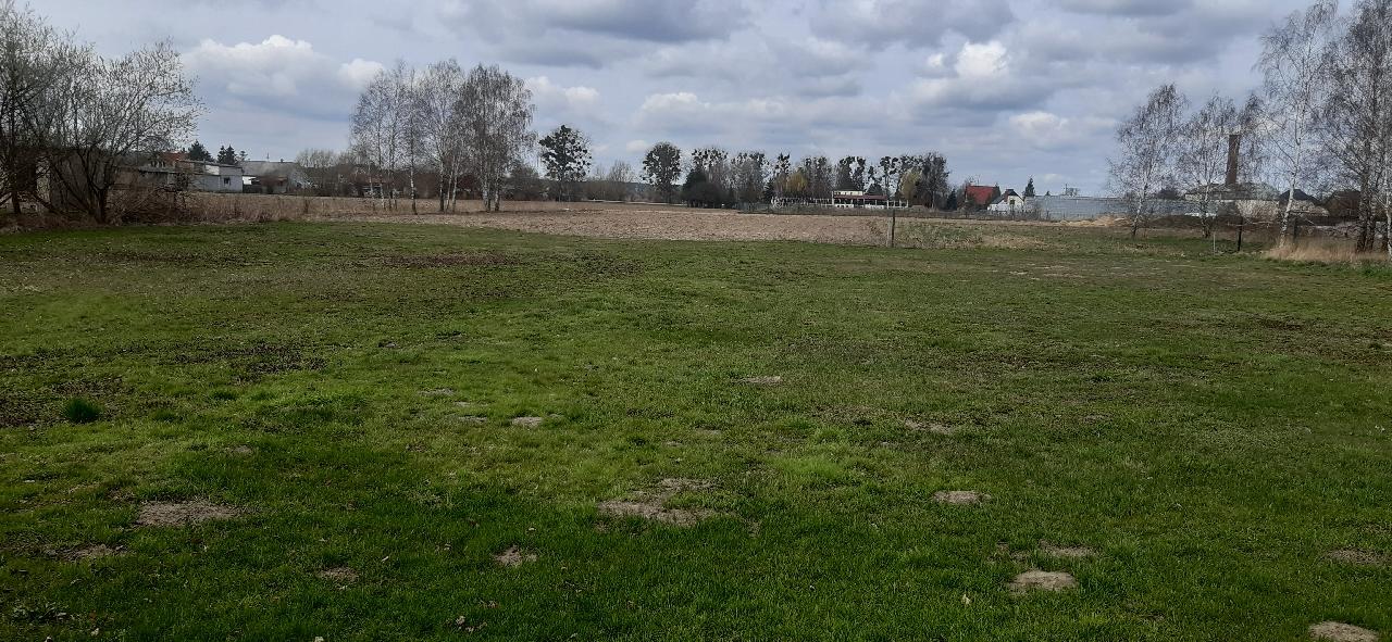 Dzika rolno - budowlana 3005 m2***Michale gmina Dragacz